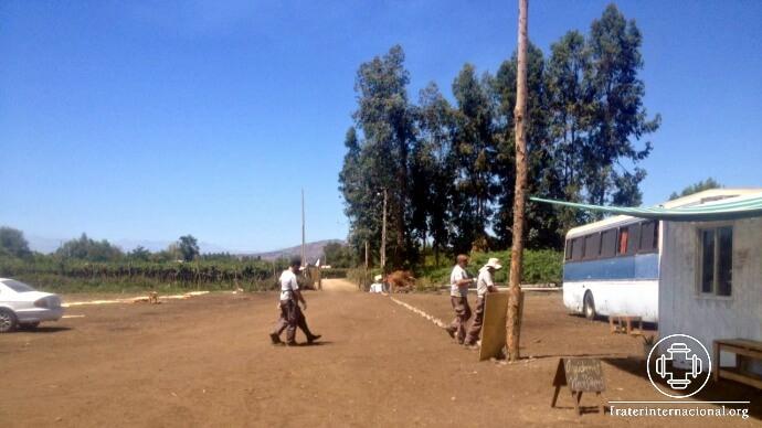 Diario de la misi n emergencia chile 12 02 for Viveros en rancagua