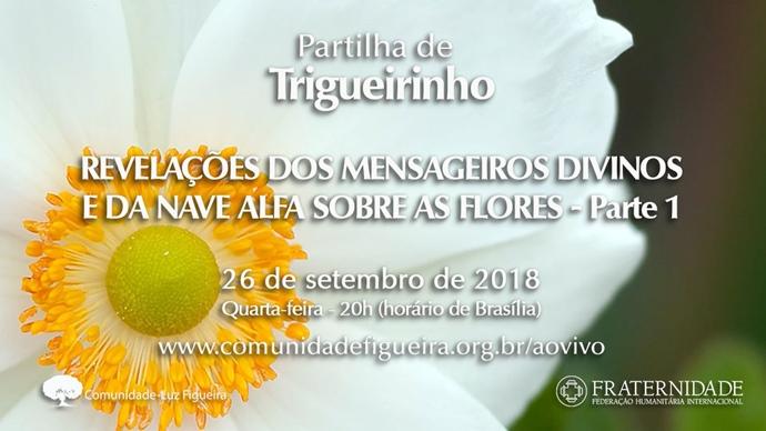 Partilha Trigueirinho - Revelações sobre as Flores
