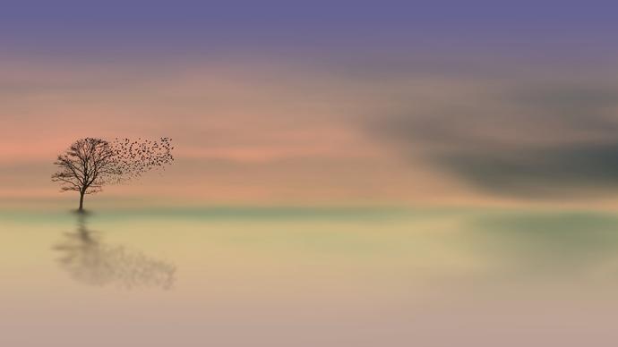 São - paisagem