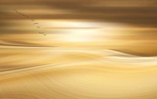 Céu dourado - Literato do Espírito