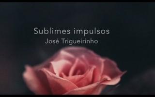Partilha Trigueirinho - Sublimes Impulsos